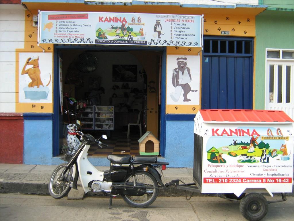 kanina-cartago